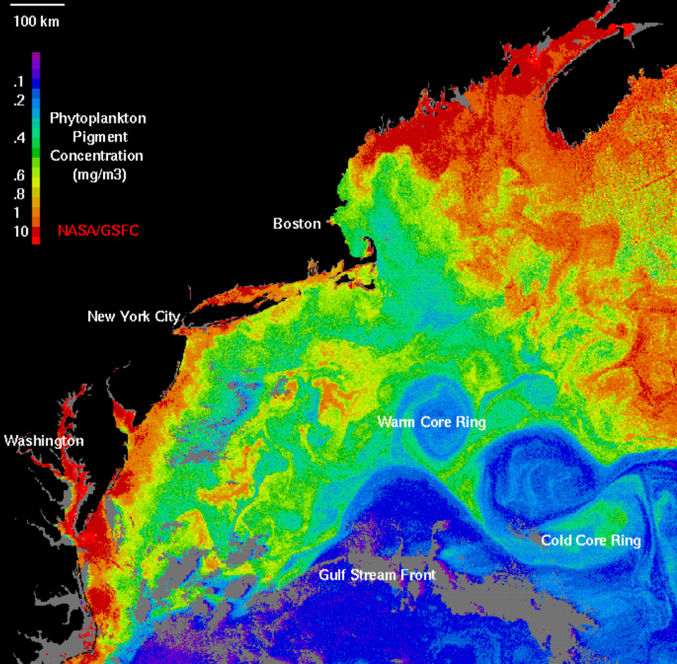 Near-surface CHL image estimated from measurements of ocean color made by the Costal Zone Color Scanner (CZCS).  Image courtesy of NASA.